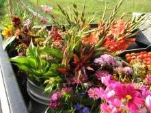 Chickadee Creek Farm's organic flowers in Pennington NJ