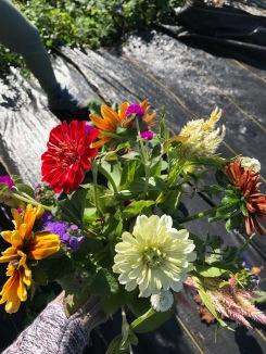 Flowers! - 12 of 18